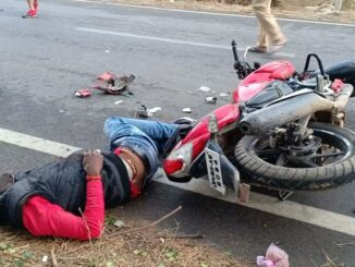 Youth's bike collided with cow dynasty, died on the spot