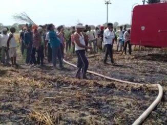 Farmer's fire burnt 15-bigha crop, sparking electric high-tension line, pleading for compensation