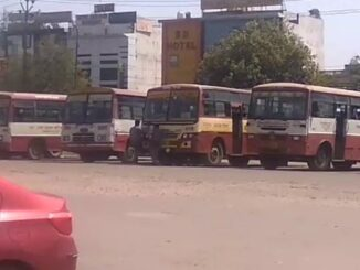 Roadways will benefit crores of revenue from special buses run on Holi festival, employees will be respected